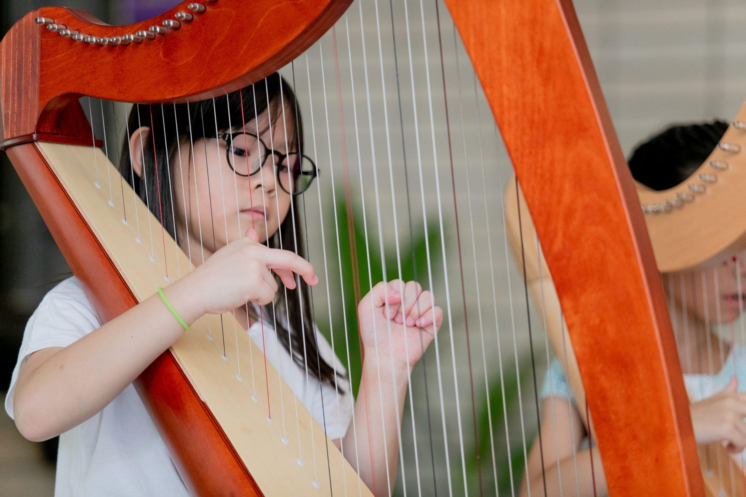 The Premier Harp Centre